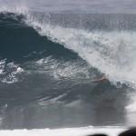 Rasta, Gallapagos tube, photo: Scott Sullivan, Hydrodynamica