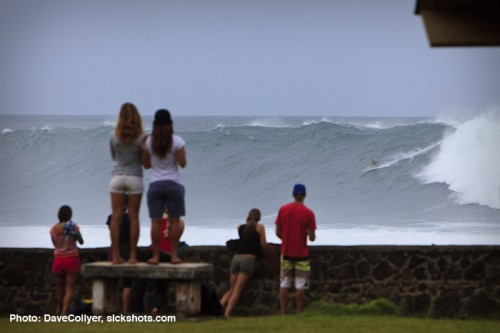 Chapman, Almost Eddie, Dec 7th, 2009 Waimea Photo: Dave Collyer