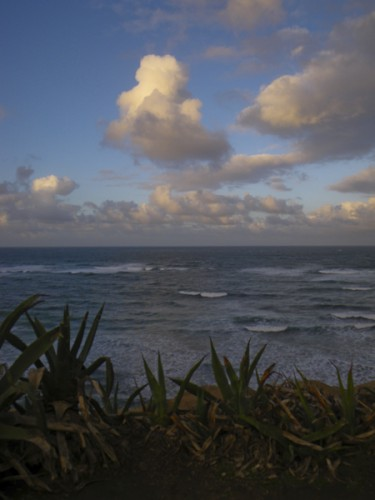 February blustery sunrise at the cliffs